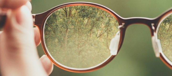 Trees through a lens